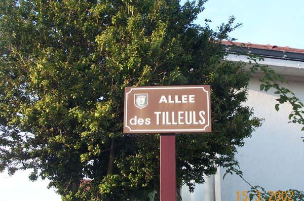 AlleeDesTilleuls_AlleeDesLauriers07