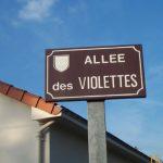 AlleeDesViolettes03